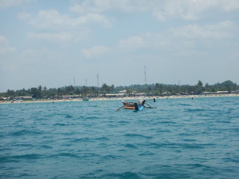 Fishing boats!