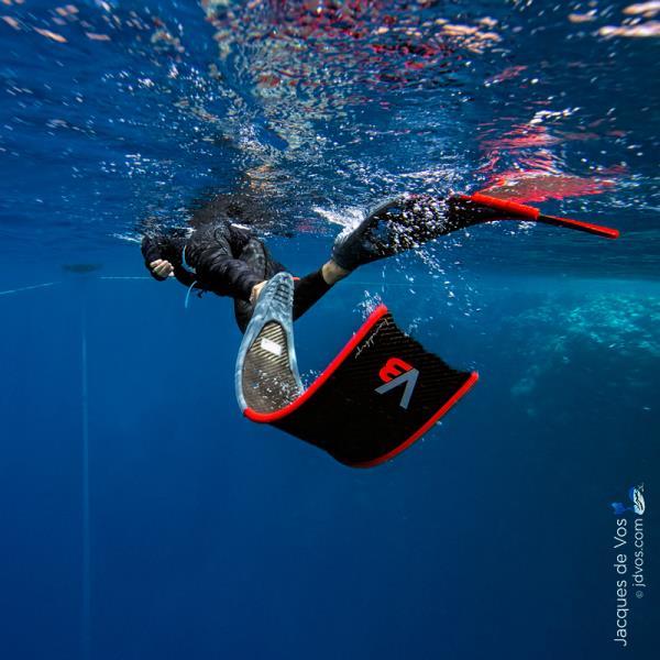 Freediver Finning