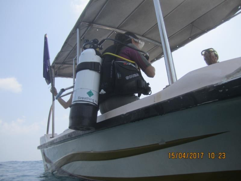 Getting ready to start the dive!