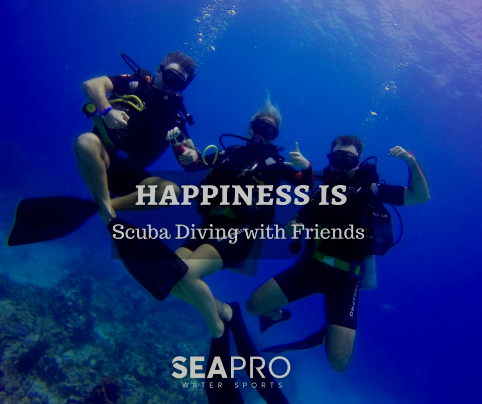 Happiness is blowing bubbles underwater with friends. Grab your dive buddy to go scuba diving in Punta Cana. Whether you're interested in exploring intricate wrecks or prefer a relaxed reef dive, with more than 12 dive sites in Punta Cana and daily dive excursions to the Caribbean there is something for every diver. #ScubaDivingPuntaCan #PuntaCanaDiving   To Sign up for our next Scuba Diving Adventure and SAVE 10%  👉👉👉 http://bit.ly/ScubaDivingPC