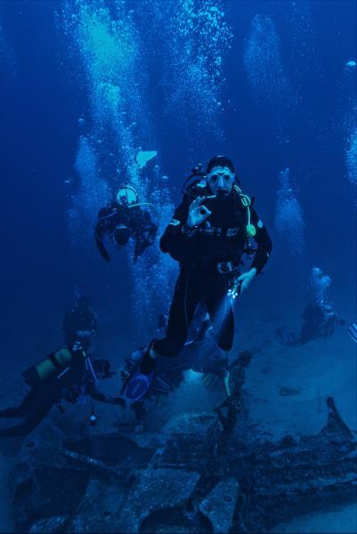 healthy scuba divers