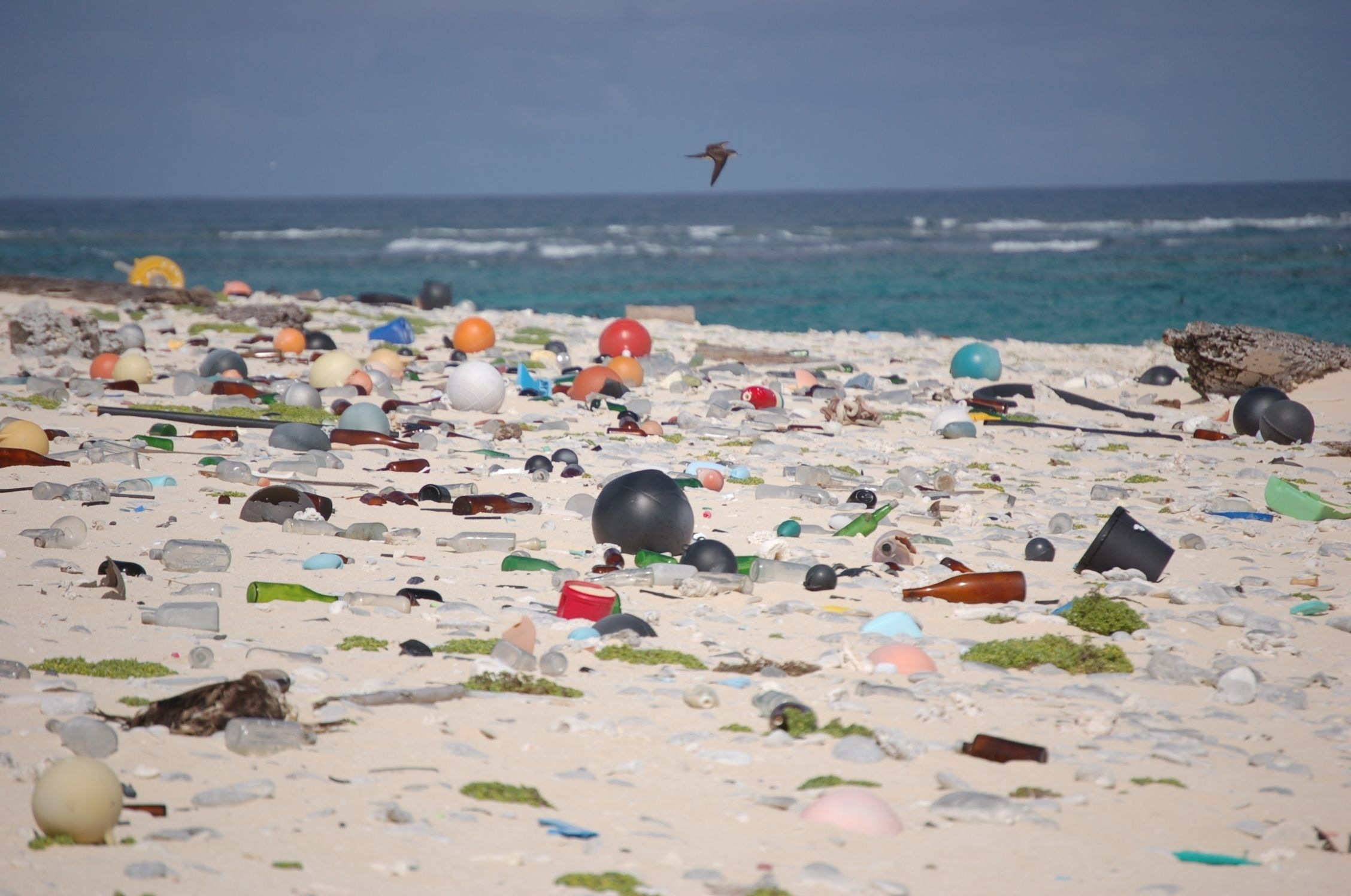 Marine debris on a beach on Laysan Island in the Hawaiian Islands National Wildlife Refuge.