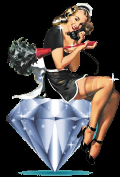 maid-logo