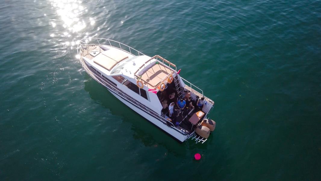 nemo diving boat in fujairah (5)