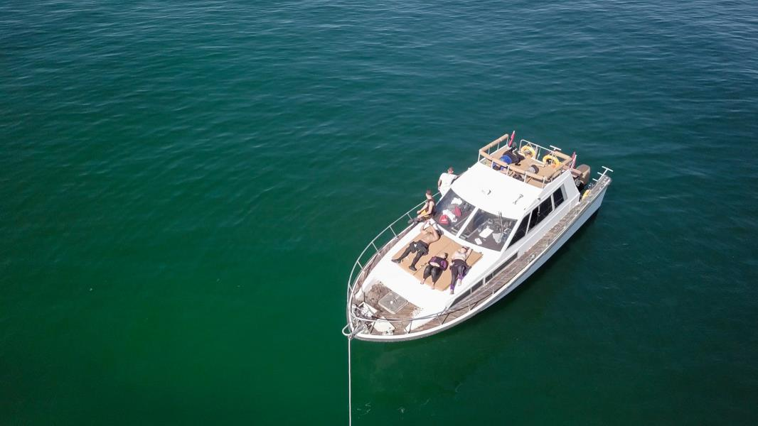 nemo diving boat in fujairah (6)