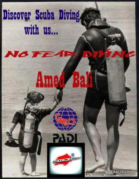 No Fear Diving AMED BALI DEUTSCHE TACUHSCHULE