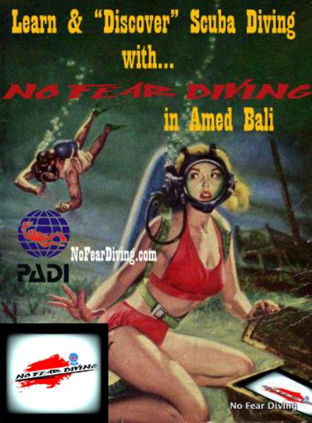 No Fear Diving AMED BALI DEUTSCHE TAUCHULE