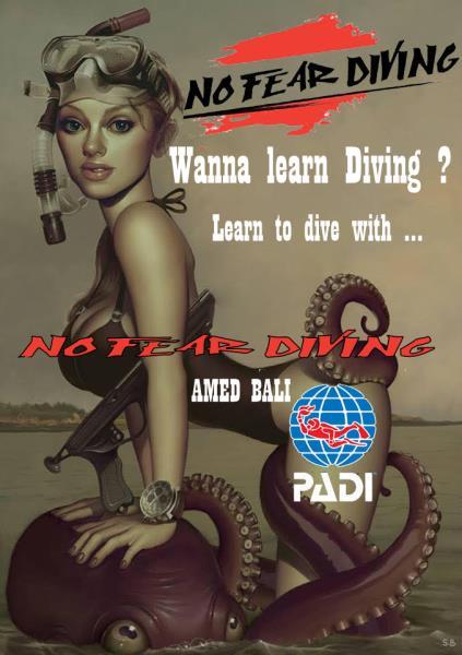 No Fear Diving AMED BALI INDONESIA DEUTSCHE TAUCHSCHULE