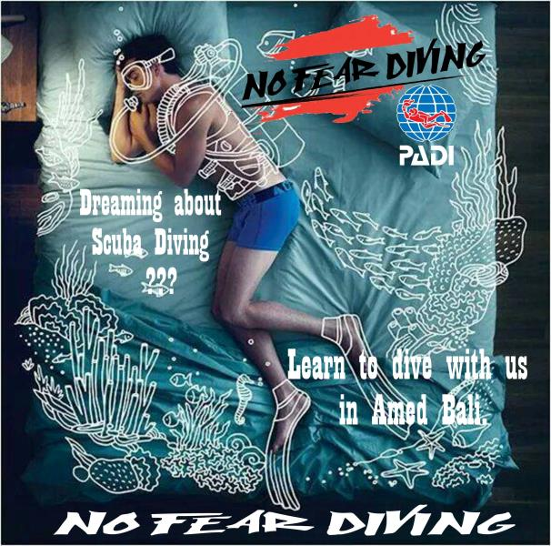 No Fear Diving LEARN TO DIVE AMED BALI DEUTSCHCE TAUCHSCBULE