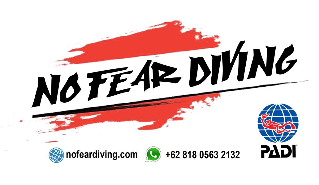 No Fear Diving LOGO AMED BALI DEUTSCHE TAUCHSULE