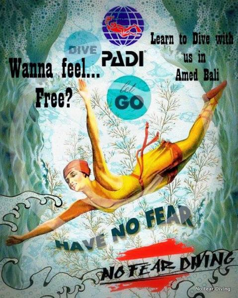 No Fear Diving no fear to dive DEUTSCHE TAUCHSCHULE