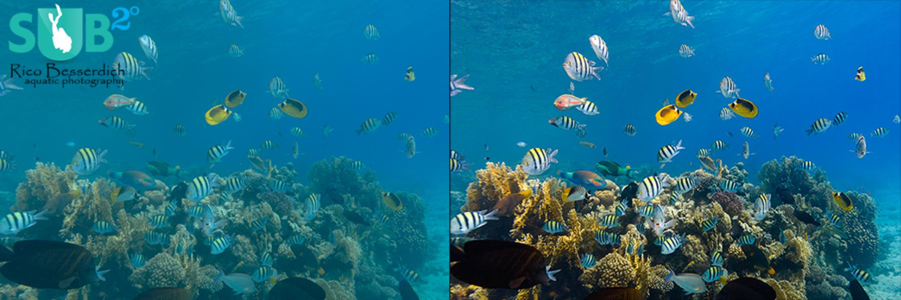Post Production of Underwater Images: Contrast Improvements