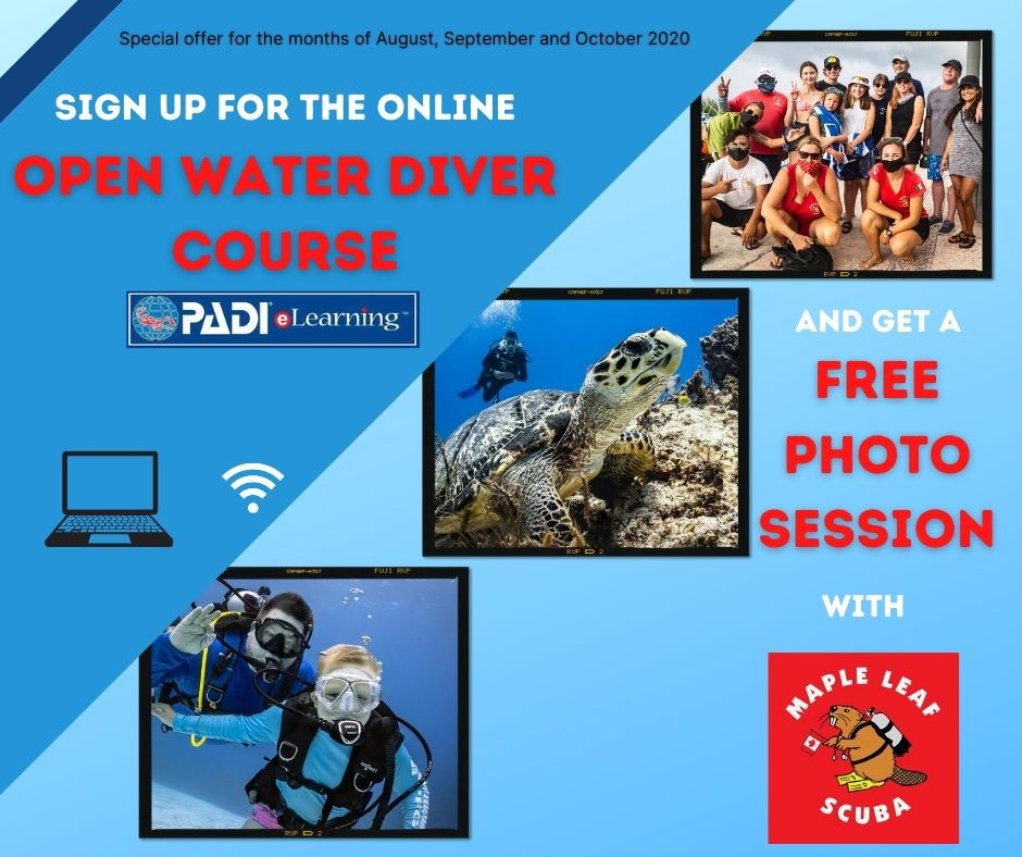 LIMITED TIME OFFER ! During the months of August, September and October, sign-up for the PADI E-Learning Open Water Diver course and get a FREE professional underwater photoshoot!! 📸  Tell a bigger story with Maple Leaf Scuba! Contact us at info@mapleleafscuba.com for more information