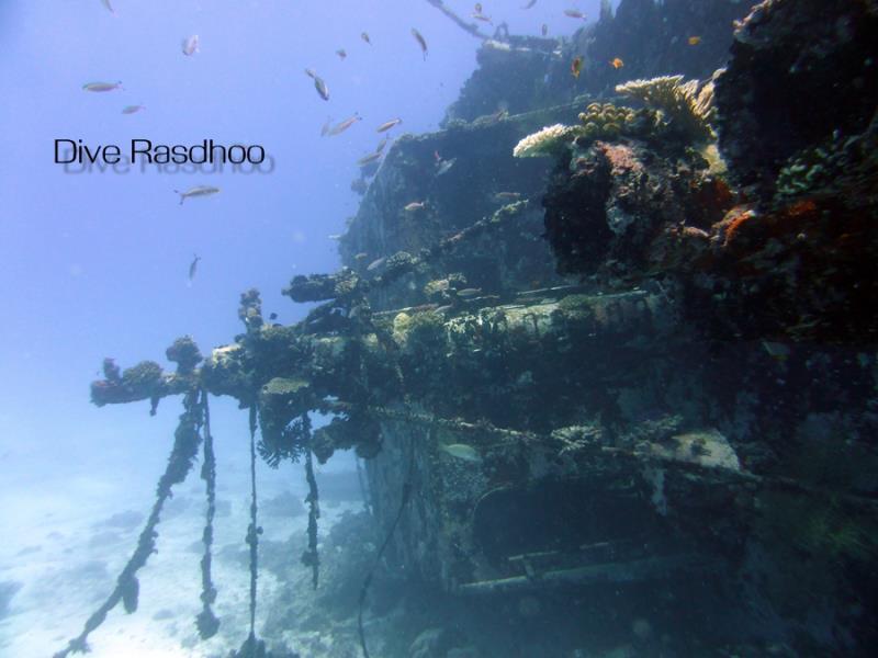 Reef Explorer Wreck