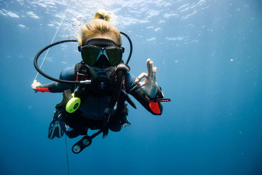 Scuba diving in Catalina Islands