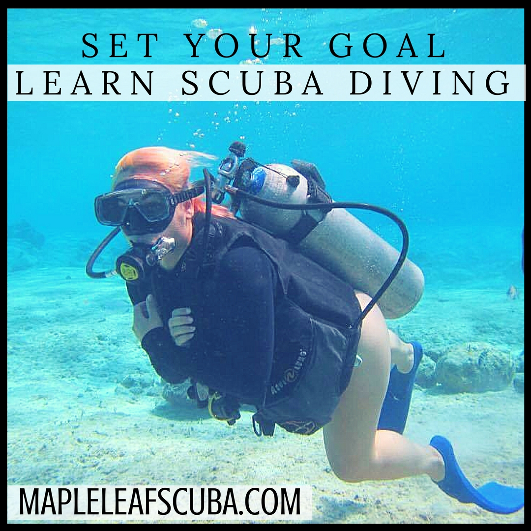 It's almost the second month of 2018. Did you set any goals for this year? How about learning to scuba dive? Mapleleafscuba.com info@mapleleafscuba.com