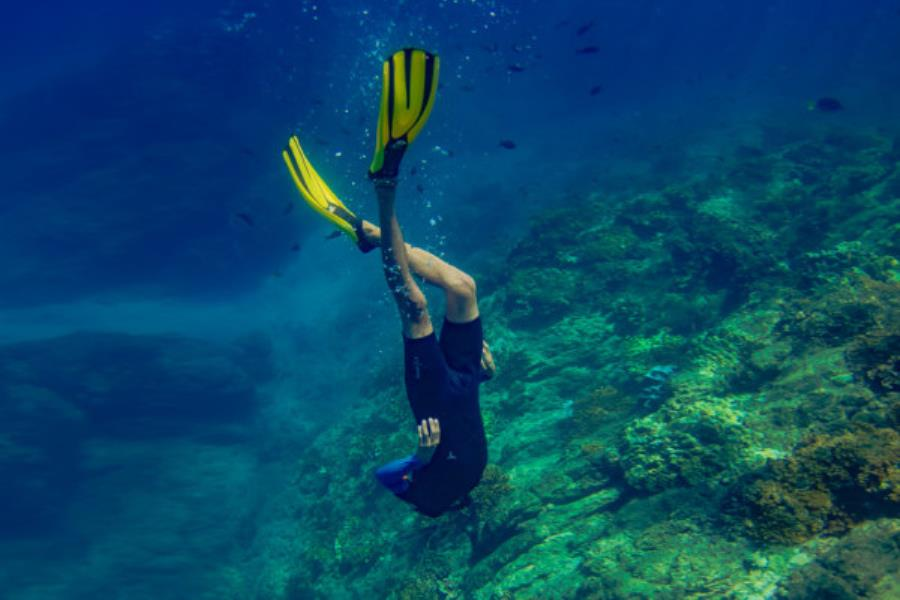 snorkeling-in-cano-island-coral