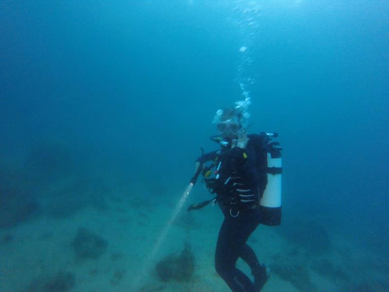 Start of night dive