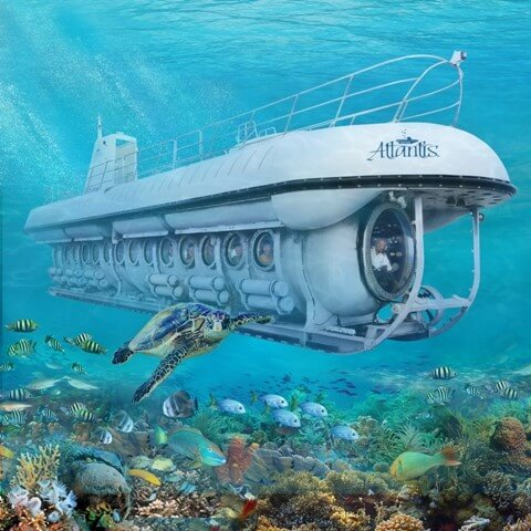 Cayman Submarine Day Dive, Submarine Tours in Cayman, Grand Cayman Day Tour