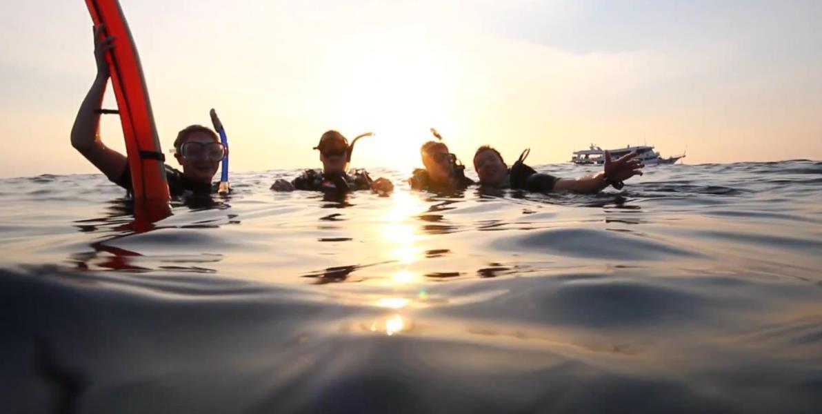 Sunset Dive