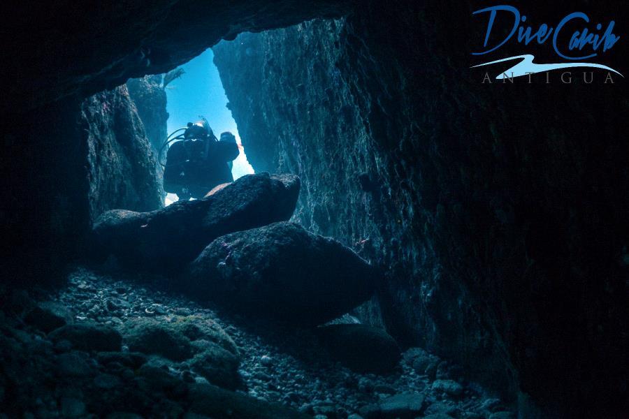 Swim through