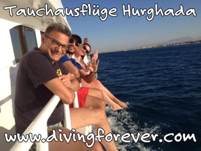 Tauchausflüge Hurghada www.divingforever.com