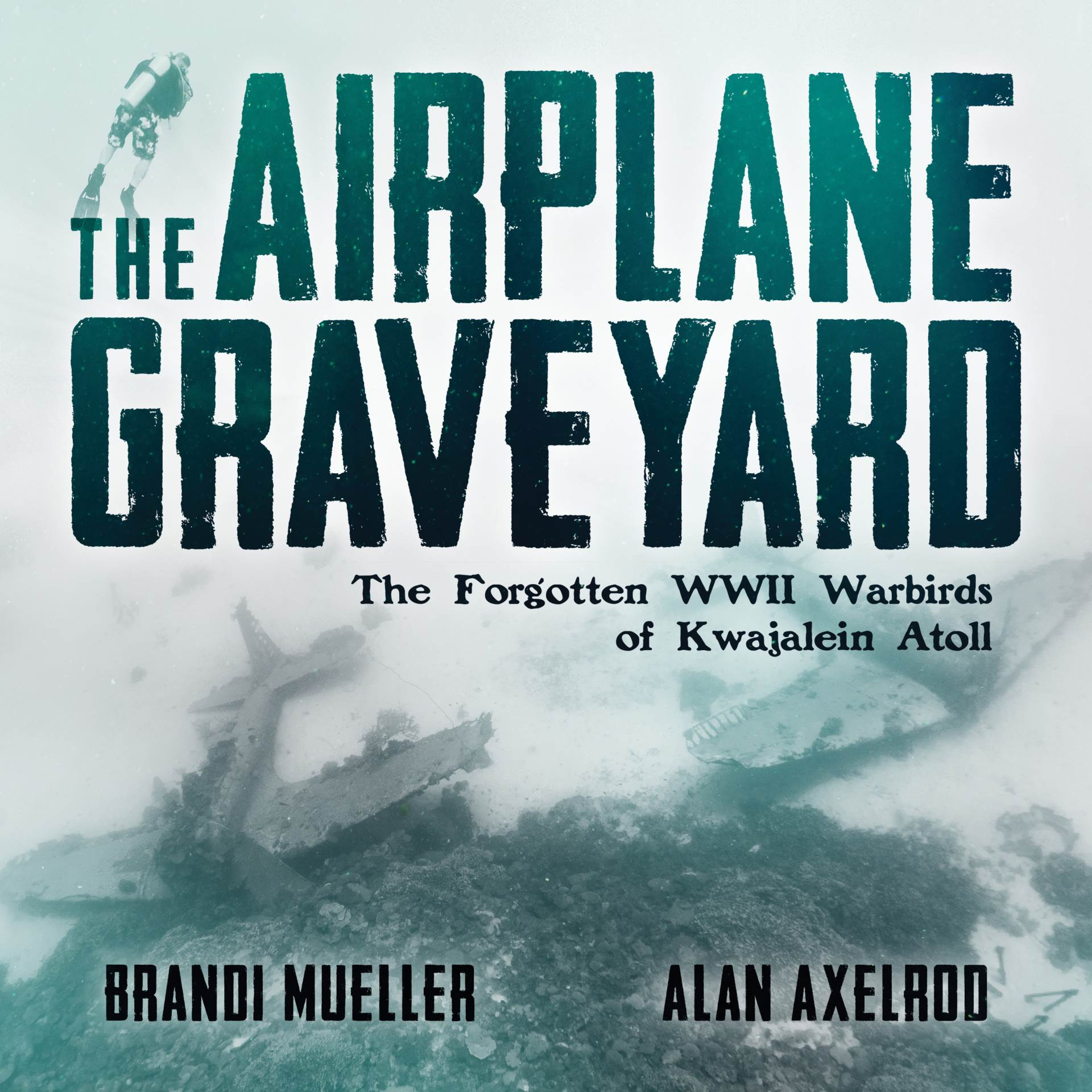 The Airplane Graveyard Cover