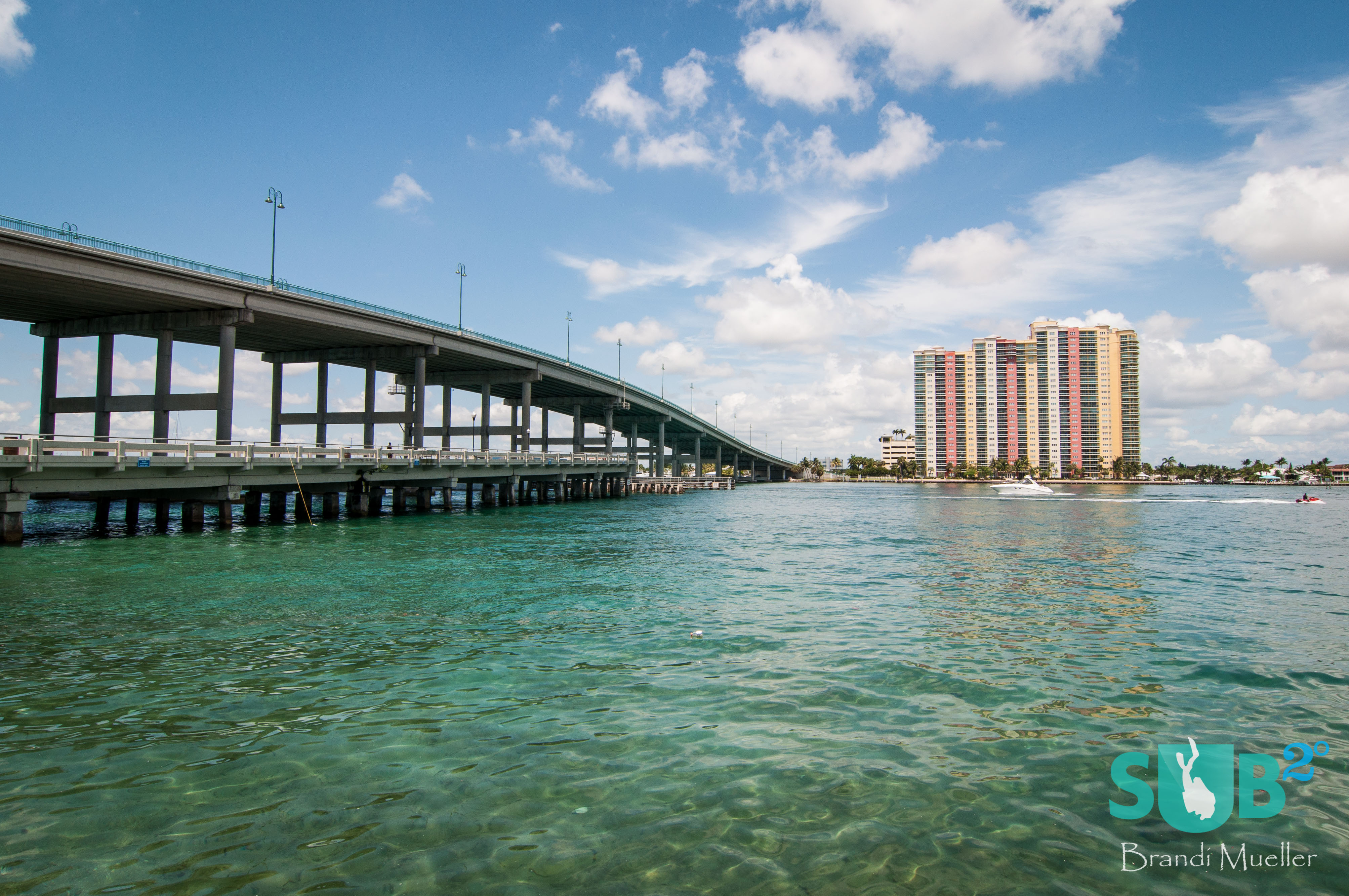 Located in Riviera Beach, Florida, the Blue Heron Bridge has some of North America's best muck diving below it.