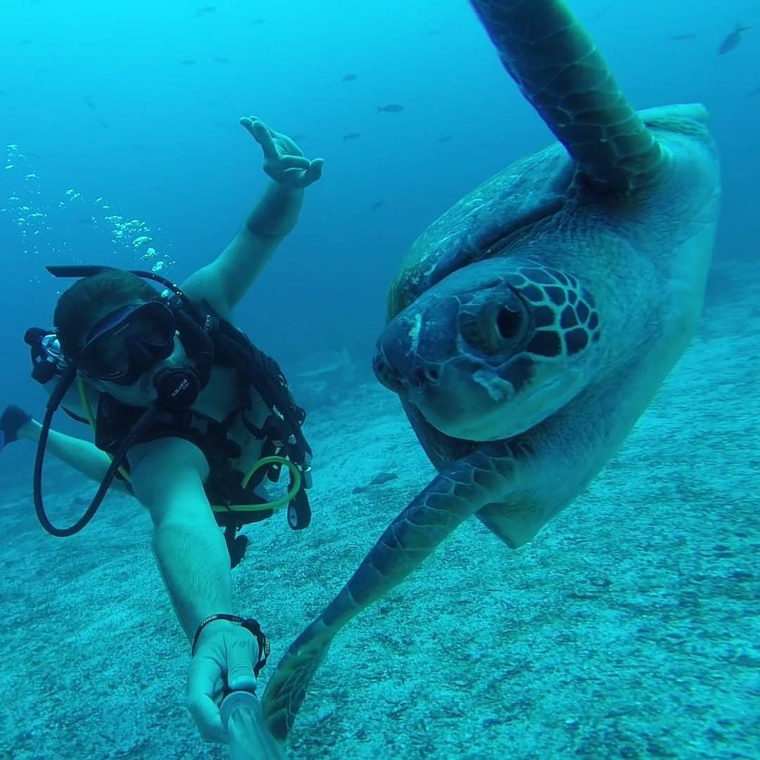 Isla Daphne en santa cruz galapagos