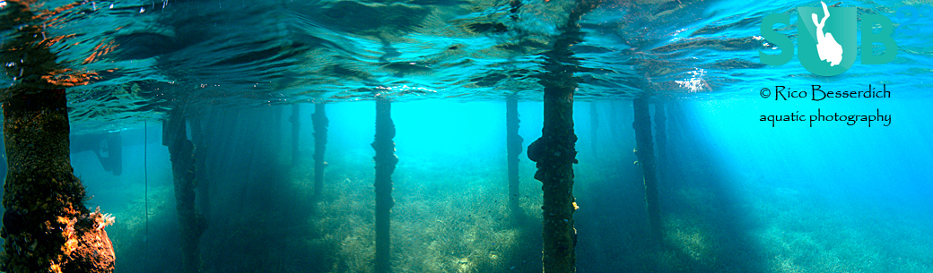 Shooting panoramas in very shallow waters allows us to use ambient light only.