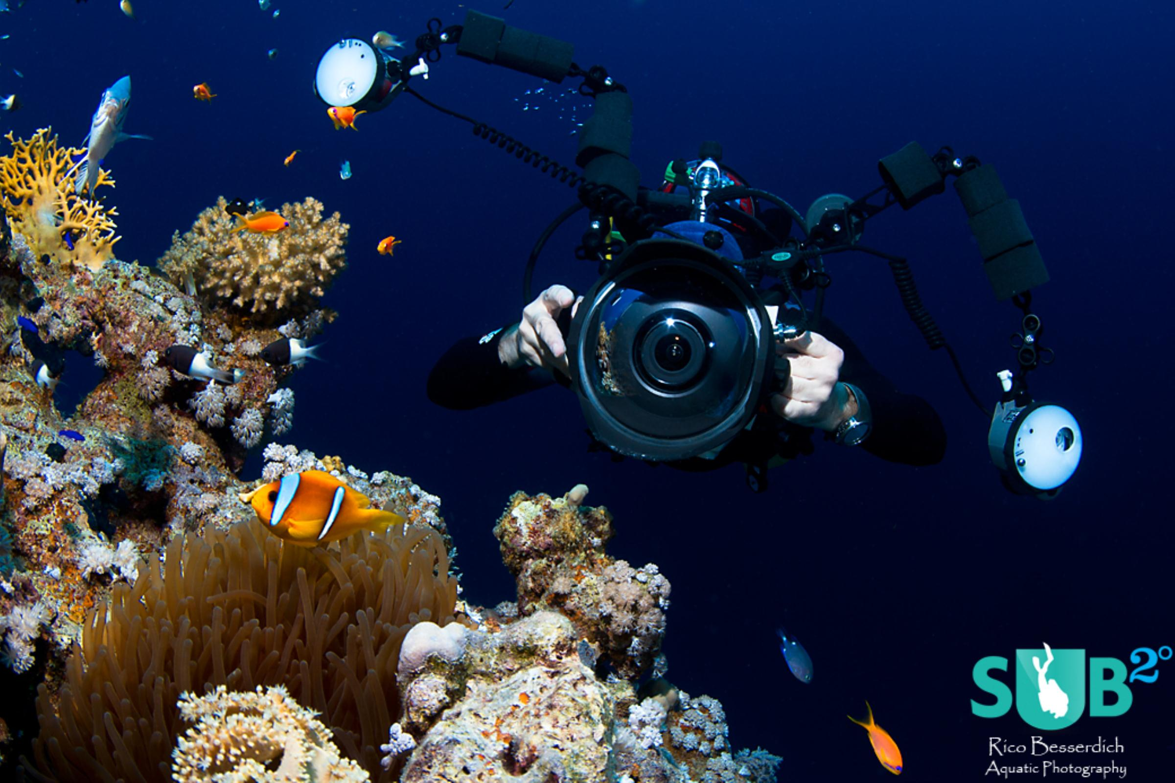 Wide-angle scene. Getting close ( 30 cm distance to the anemone-fish here ) boosts colours & tension.