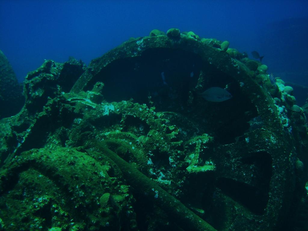 Wreck dive in Bermuda. Photo by: Cait_Stewart Link: https://flic.kr/p/5kEK9D