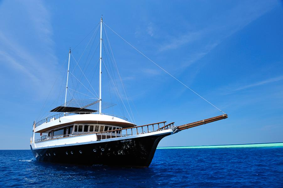 www.cruise-maldives.com diving vessel